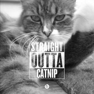 Sprite - thug life