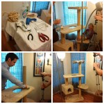 Climb-It Cat behind the scenes video photo